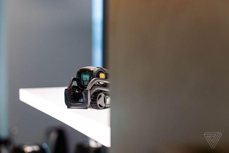 Robot Technologie Le D'alexa De Sera La Doté Vector N0y8wPnvOm
