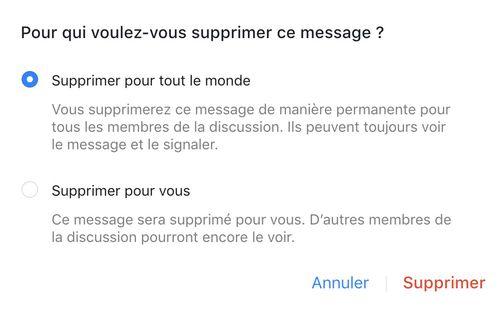 capture fenêtre supprimer un message dans Messenger