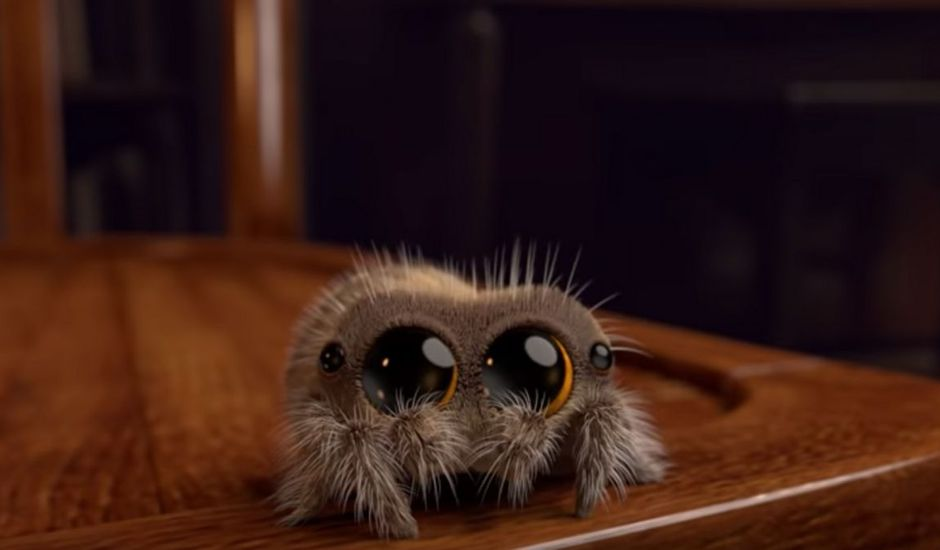 lucas l'araignee serie animation