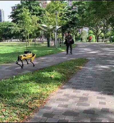 Le robot Spot de Boston Dynamics dans un parc à Singapour