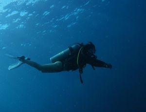 Un plongeur nage dans l'eau.