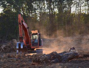 Tesla : une pelleteuse en train de déboiser une forêt