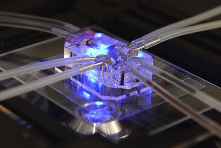 microfluidique gel