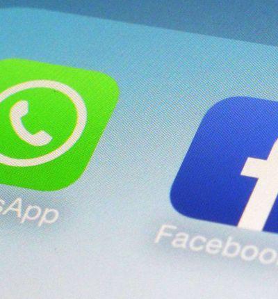 WhatsApp : pour le plus grand plaisir de Facebook, la publicité va faire son apparition