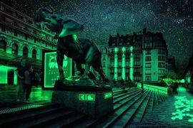 Illustration d'éclairage avec la bioluminescence
