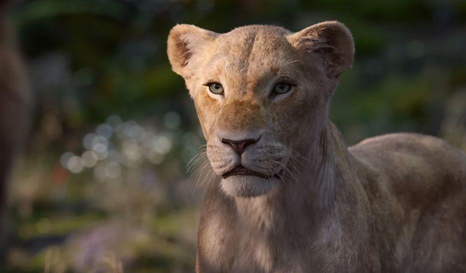 la chanteuse beyonce prête sa voix à nala dans le film le roi lion