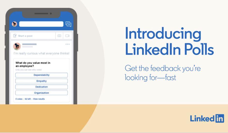 LinkedIn lance deux nouvelles fonctionnalités : les sondages et les vidéos en live