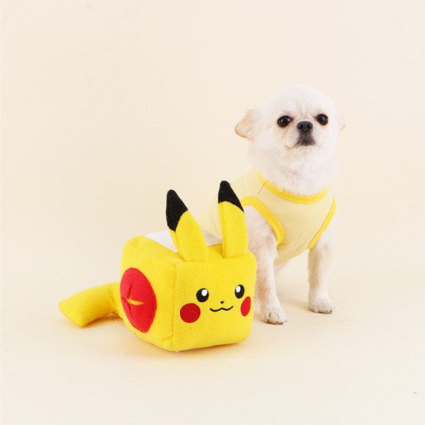dasom pokemon chiens pikachu