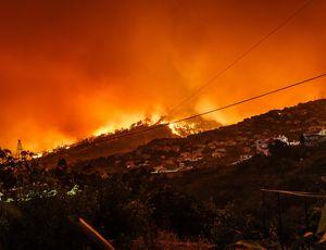 Des feux de forêt au Portugal.