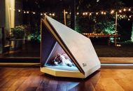 Ford présente un prototype de niche anti-bruit pour les chiens
