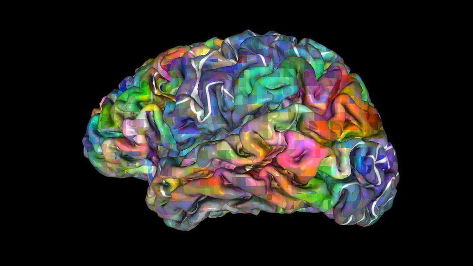 Des chercheurs capables de prédire ce que votre cerveau va décider.