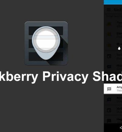 blackberry shade