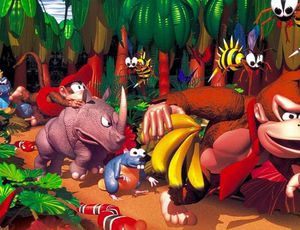 Visuel pour Donkey Kong Country