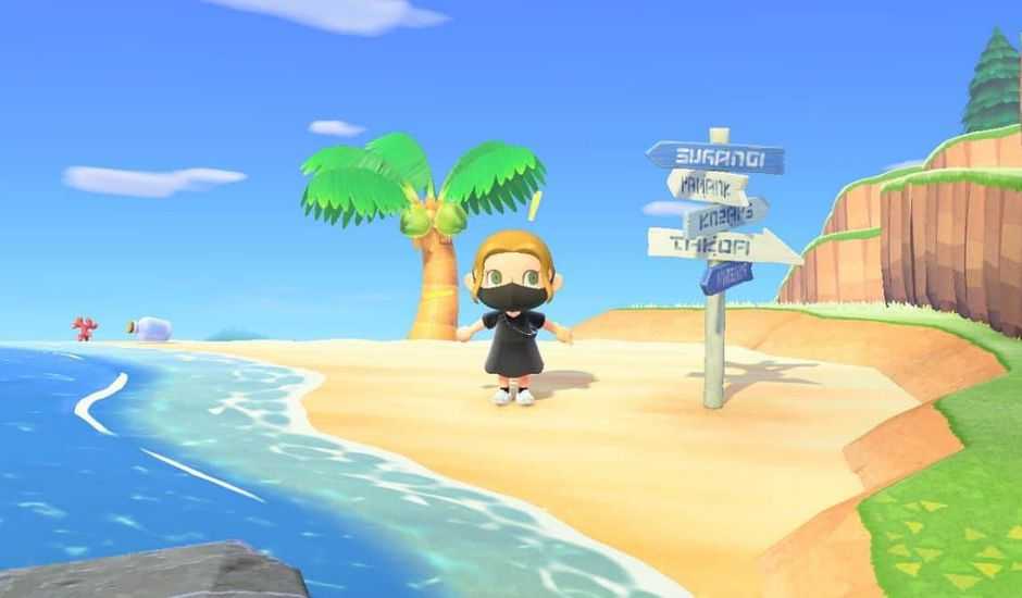 capture d'écran du jeu Animal Crossing : New Horizons