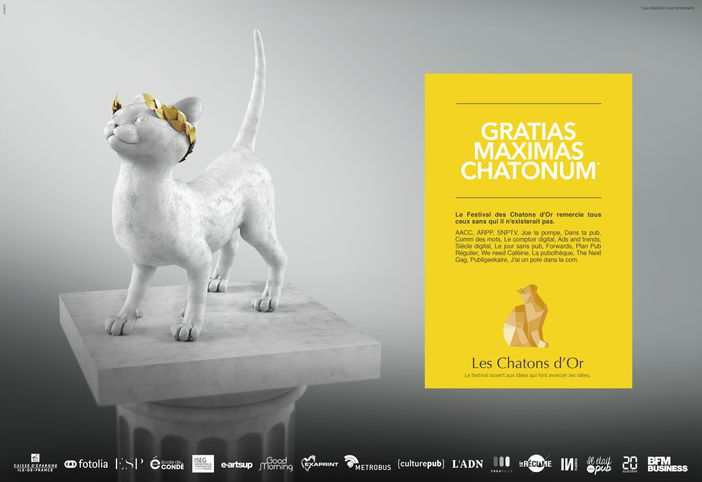 Les-Chatons-dOr-2016-7