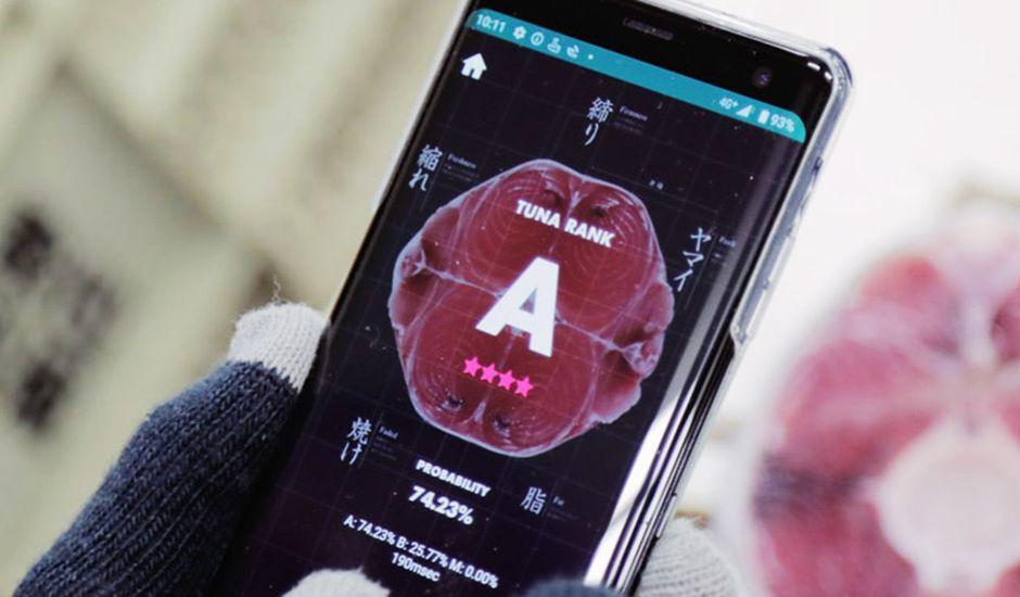 Un smartphone avec l'application Tuna Scope.
