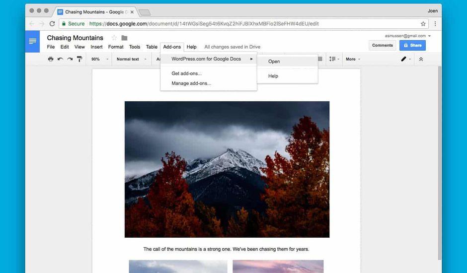 wordpress google docs