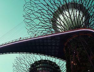 Jardins de la baie de Singapour