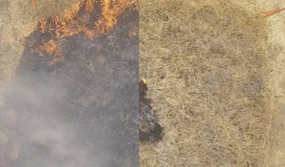Un gel capable d'agir contre les feux