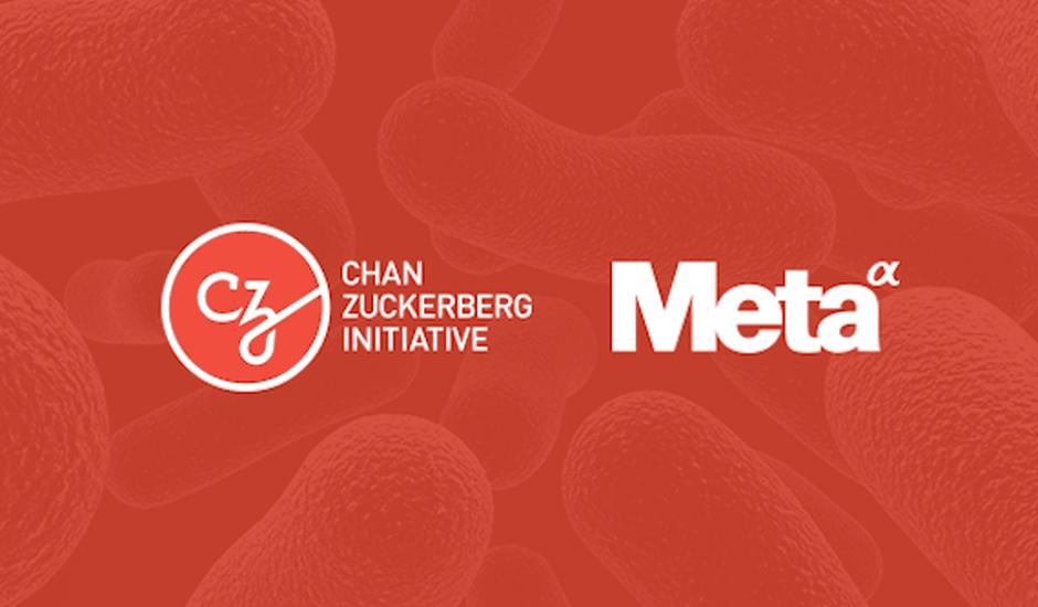 meta fondation chan zuckerberg