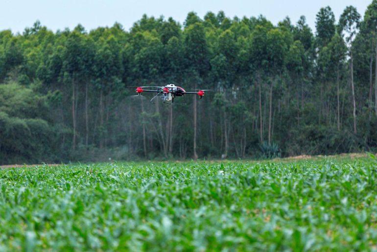 Des drones protègent les cultures des agriculteurs.
