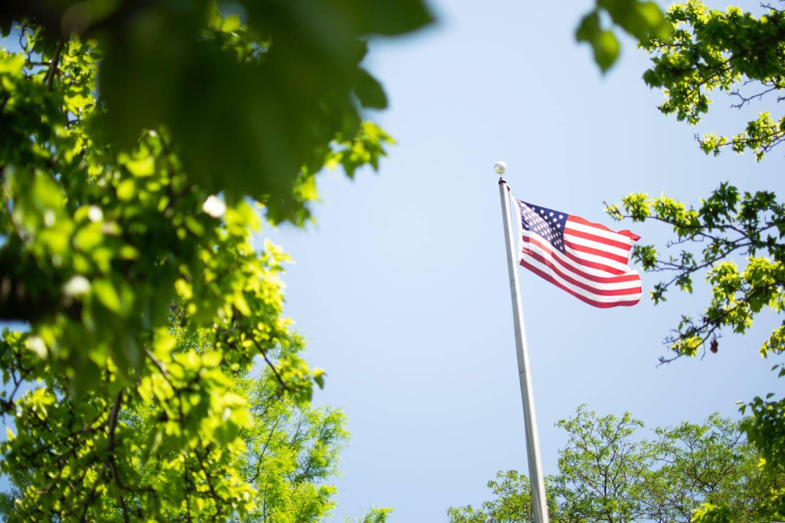 Le drapeau des États-Unis derrière des arbres.