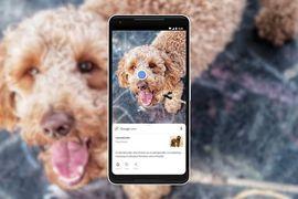 Google Lens est enfin disponible sur l'application iOS de Google