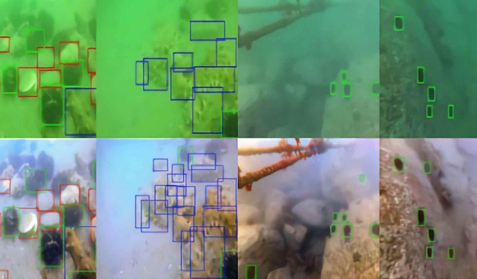 Un algorithme qui améliore les photos sous-marines.