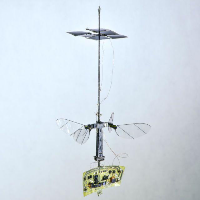 Le robot insecte de l'Université d'Harvard