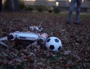 Le robot Cheetah peut jouer au football.