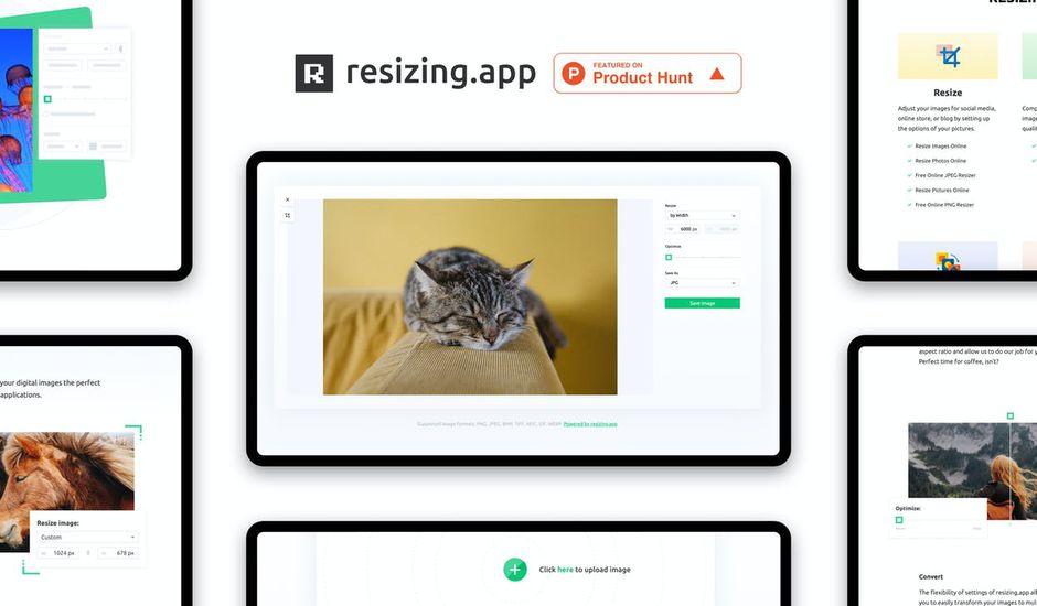 l'outil resizing.app avec une photo de chat