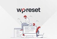 illustration du plugin WP Reset