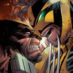 cover wolverine 350
