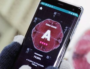 Un smartphone avec l'application Tuna Scope.