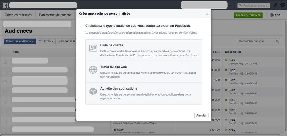 facebook ads audience personnalisée liste clients