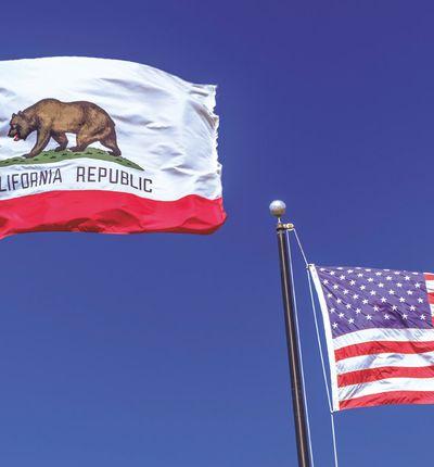 Un drapeau californien et un drapeau américain flottent dans le ciel.