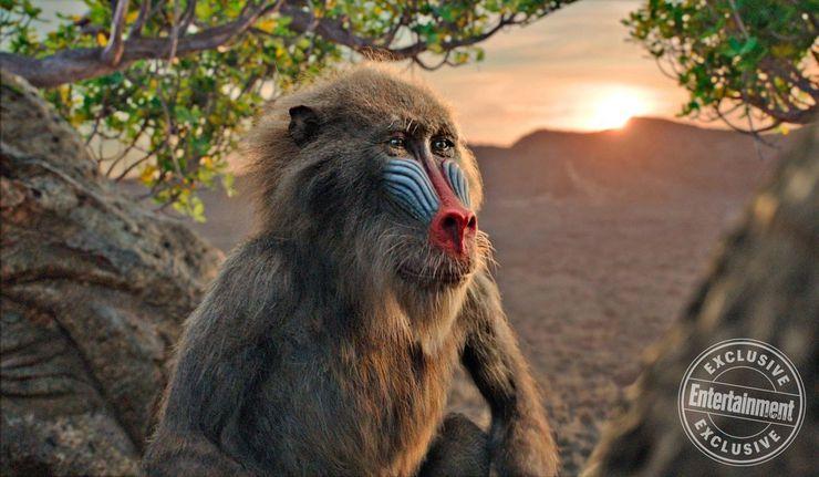 le roi lion film 2019 disney rafiki