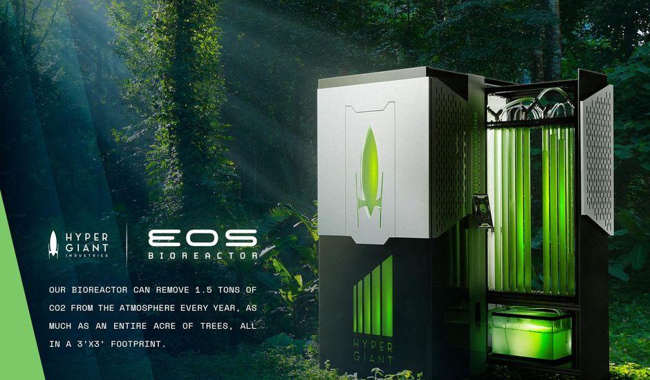 Un bioréacteur pour stocker du CO2