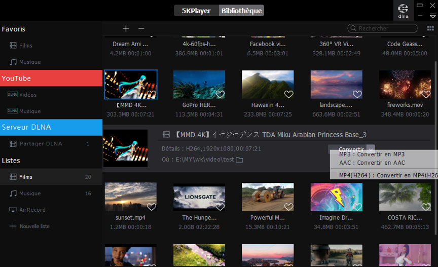 capture d'écran 5KPlayer