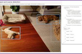 AWS et Rekognition permettent de localiser un objet dans une photo.