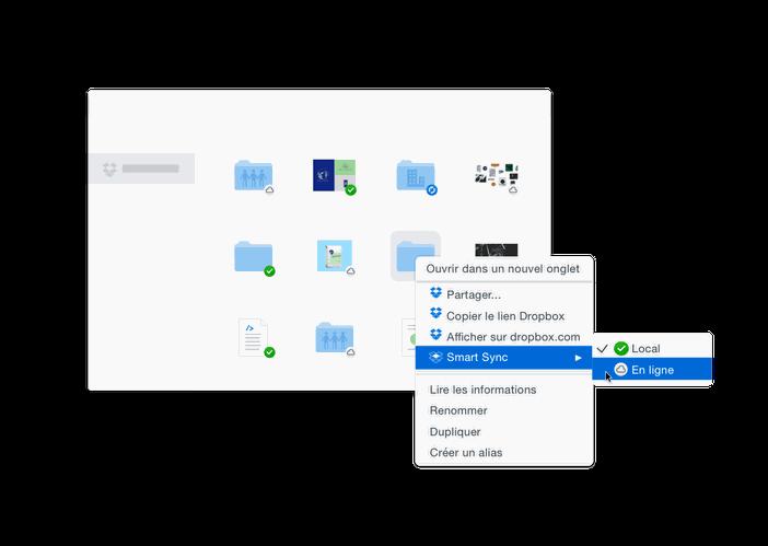 Dropbox Professionnal Smart Sync