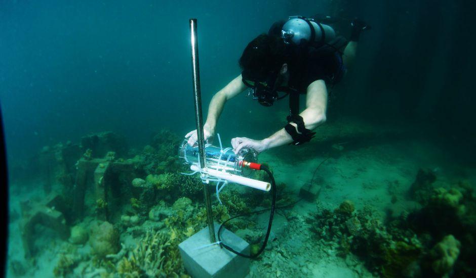 Un plongeur installe le Projet CORail