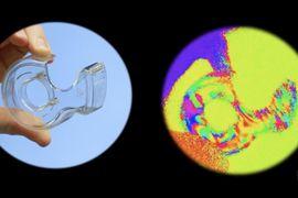 Des scientifiques travaillent sur la vision des crevettes.