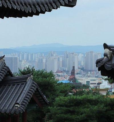 La Corée du Sud va réglementer les cryptomonnaies.