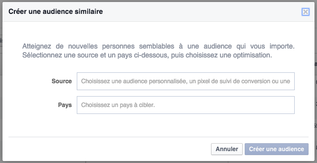 Facebook ads audience similaire