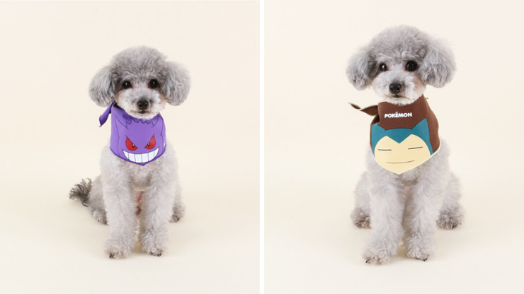 foulards dasom fashion pokemon chiens ectoplasma ronflex