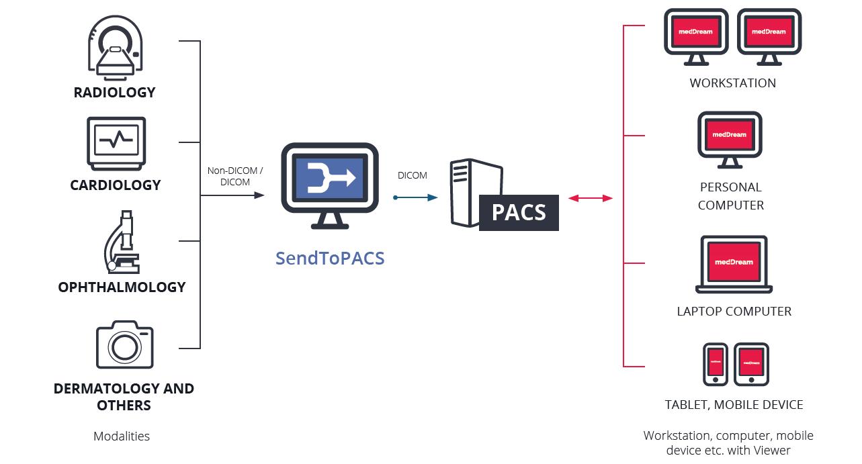 Le rôle d'un serveur d'image PACS